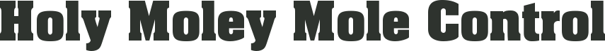 www.holymoley.co.uk Logo